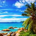91.Tropical beach La Digue