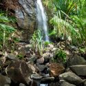 7. Waterfall Praslin Vallee de Mai