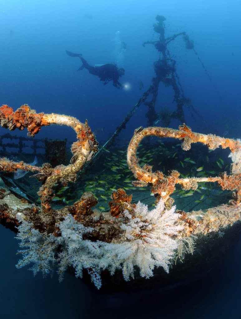 Seychelles scuba diving