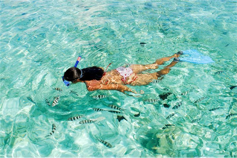 Mahe Snorkeling